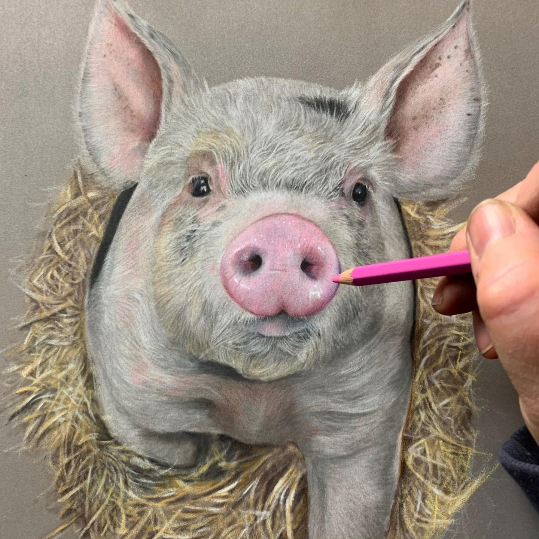 Piglet - Patreon - Tutorial Gallery - Bonny Snowdon Fine Art