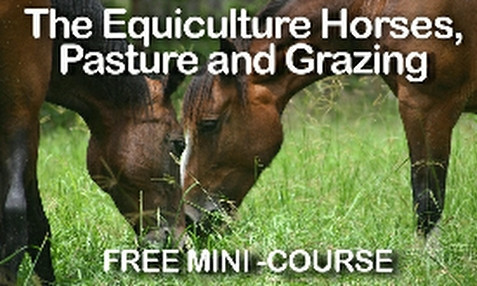 Equiculture FREE Horse Grazing Characteristics Course