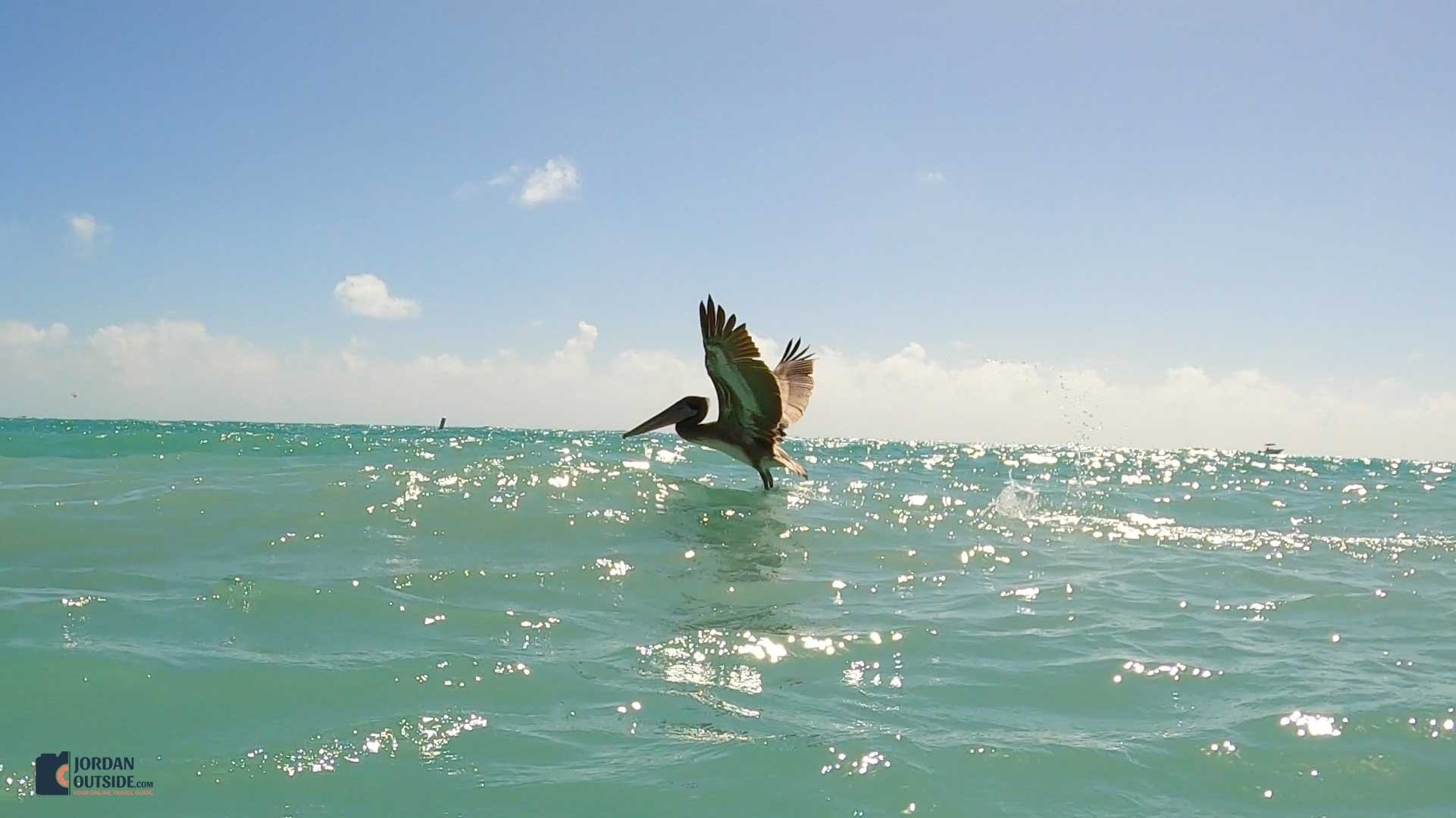 Fort Zachary Taylor State Park Beach