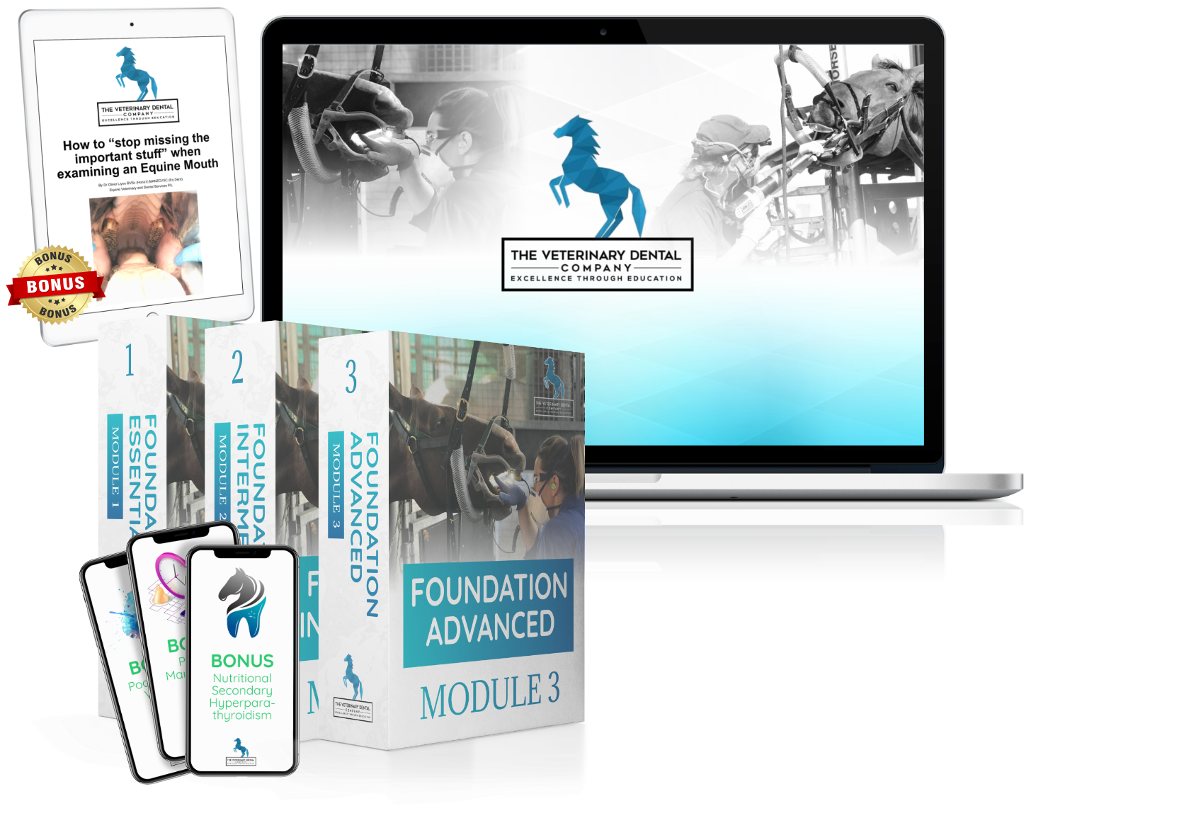 The Veterinary Dental company mockup for online education in equine dentistry for veterinarians