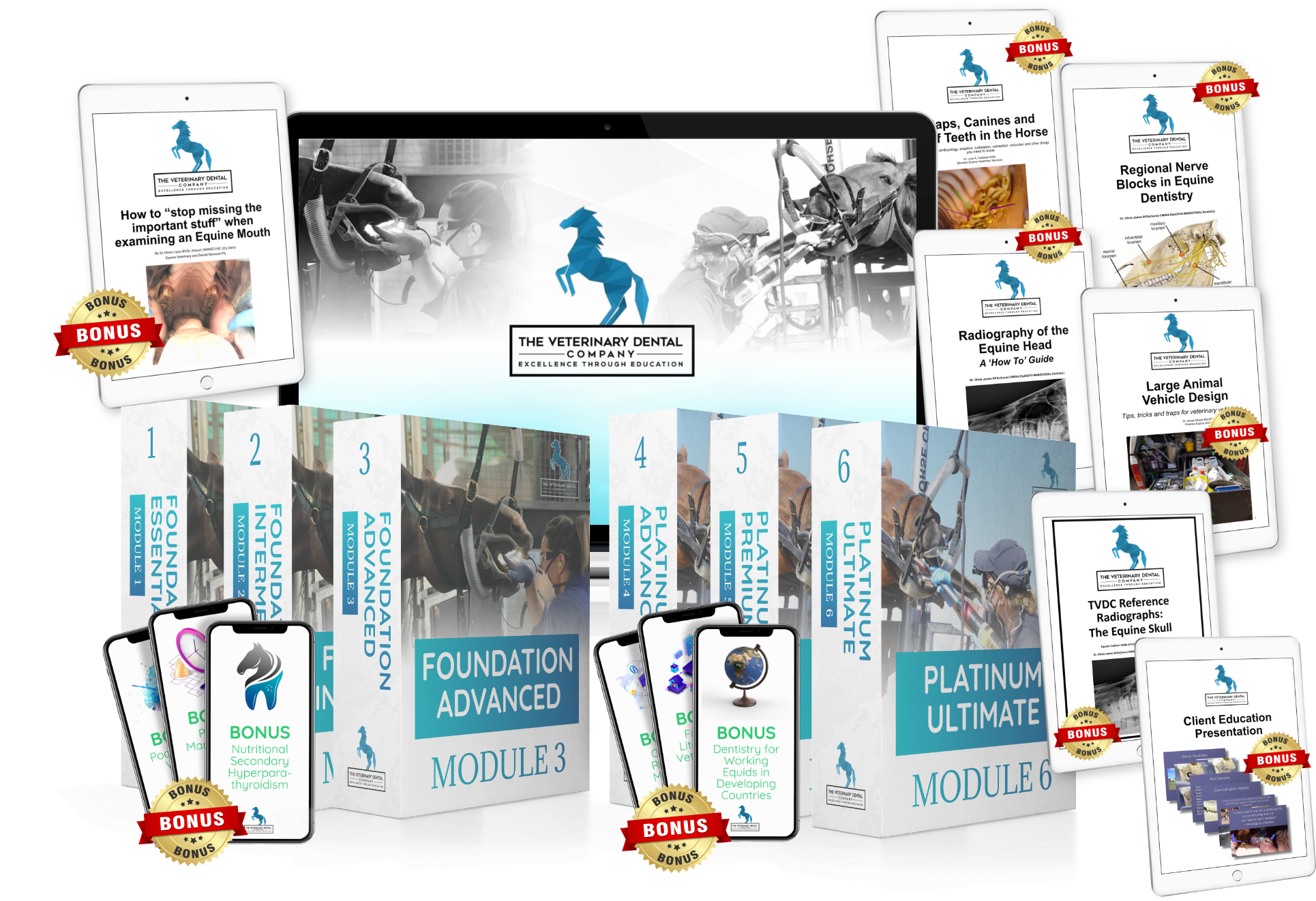 The Veterinary Dental Company mockup for online training in veterinary equine dentistry including ebooks on xrays of the horse skull, equine vehicle design, regional nerve blocks for equine dentistry, caps canines and wolf teeth