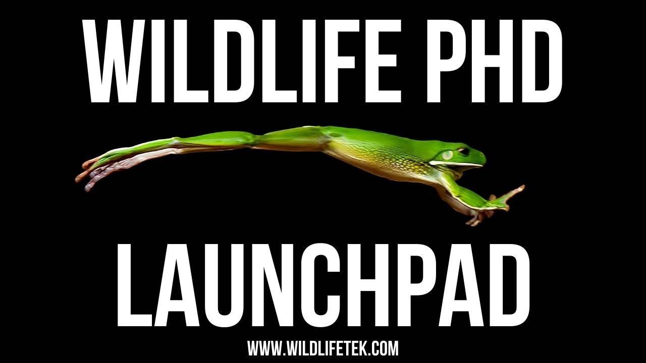 Wildlife PhD Launchpad