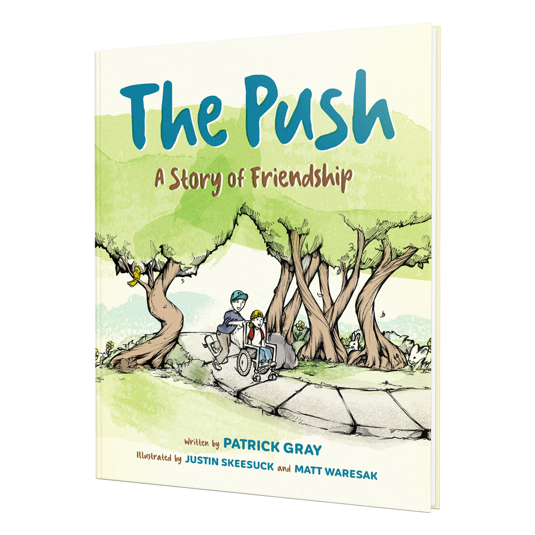 Book Cover: The Push, A Story A Friendship