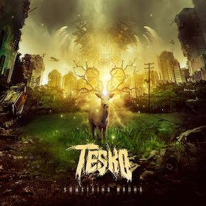 New EDM Music Something Wrong by Tesko