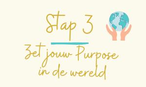 Stap 3 Zet jouw  Purpose in de wereld
