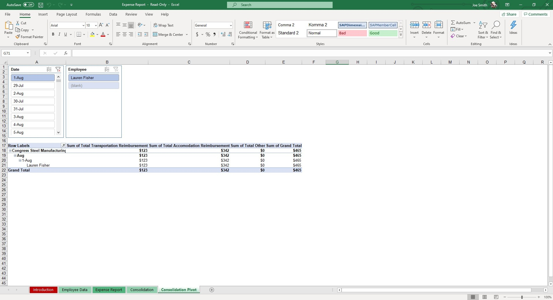 The Consolidation Pivot sheet allows you to segment Expense Reports by Date or Employee for full analysis.