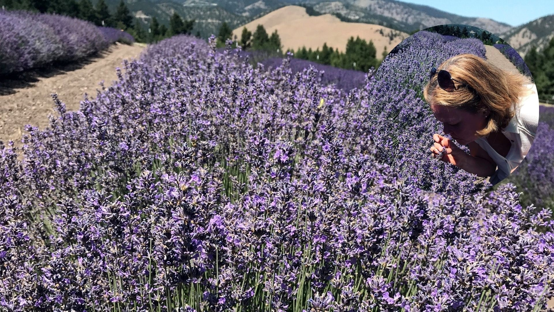 Frauke standing in a field of lavender with hands up feeling joyful