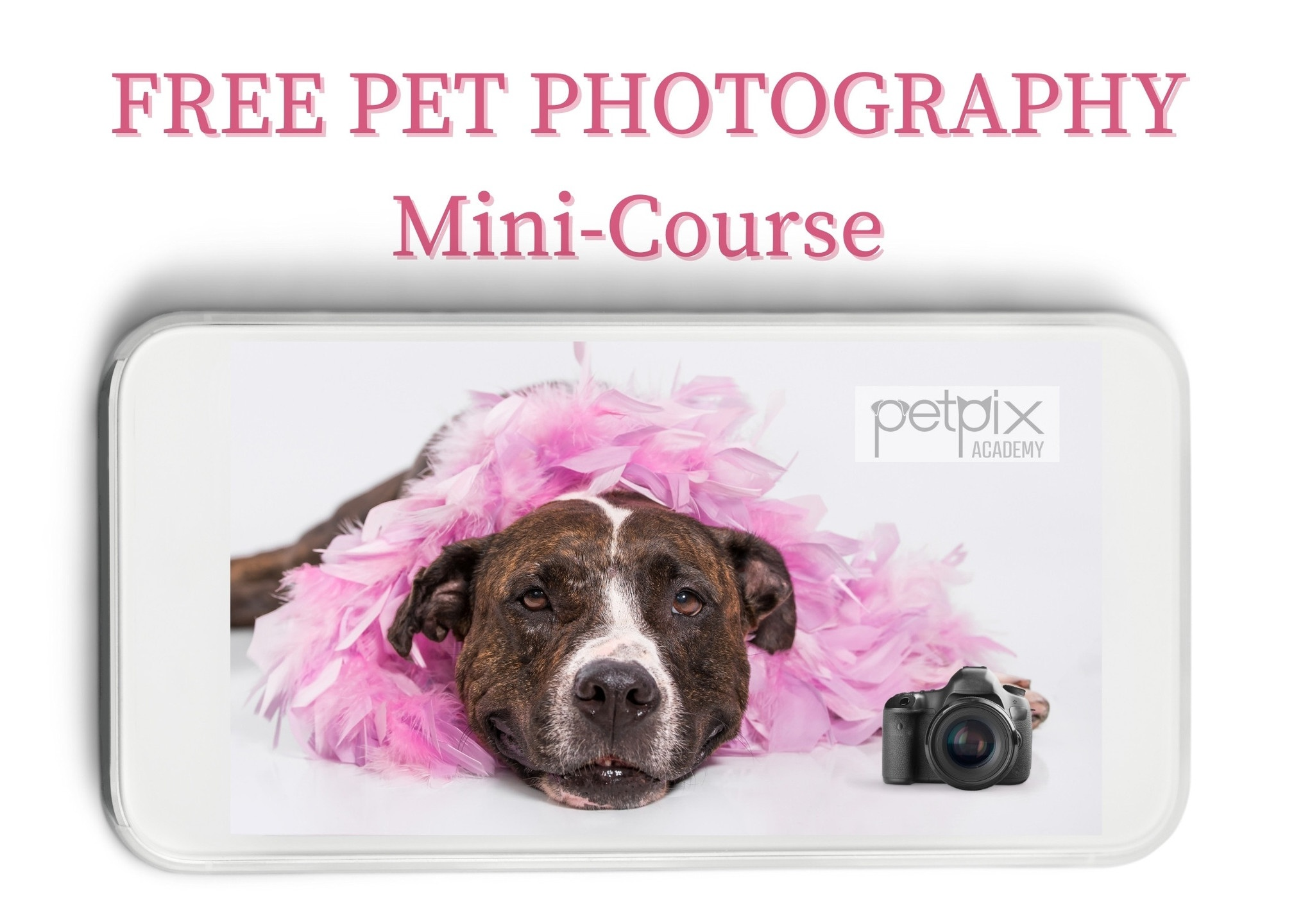 Free mini per photography class for beginners with VAsi Siedman