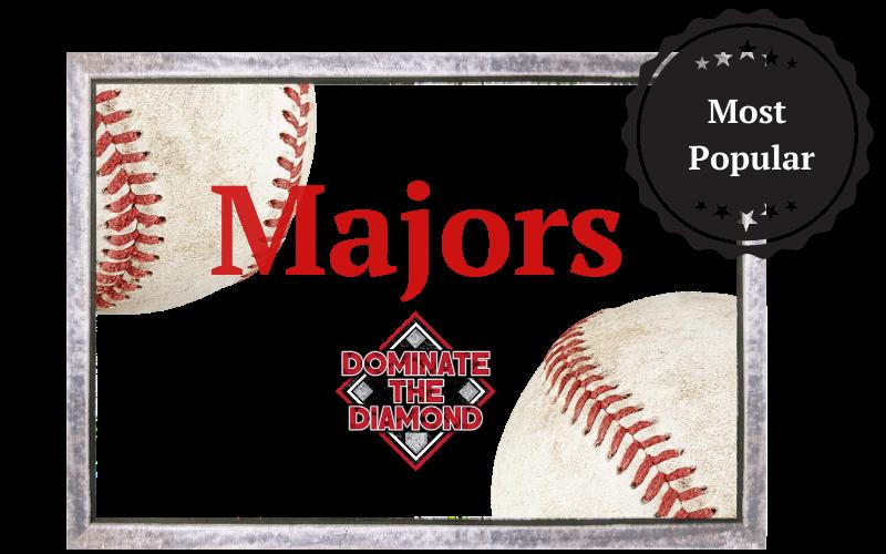 Majors Baseball Course