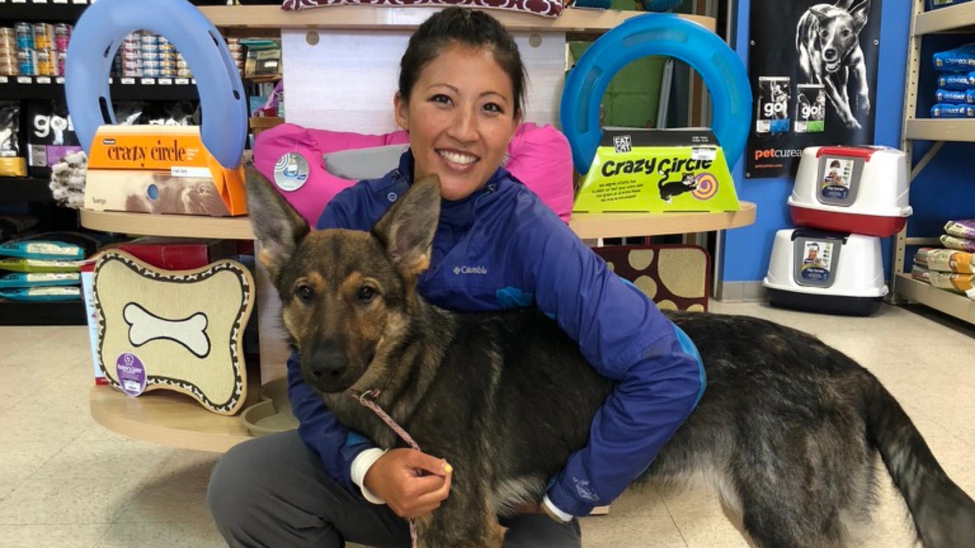 Metropawlitan Dog Training Inc.