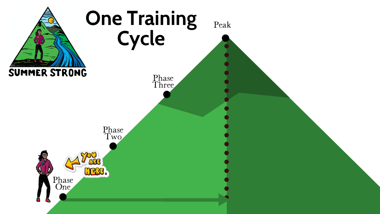 One Training Cycle