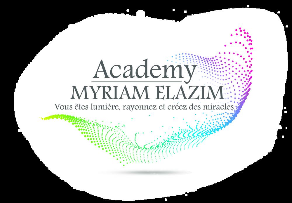 Logo Academy des Lumières