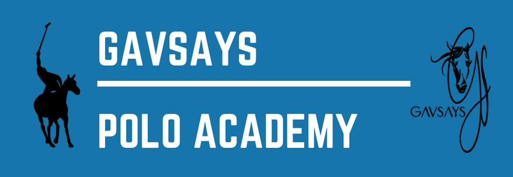 GavSays Polo Academy Logo