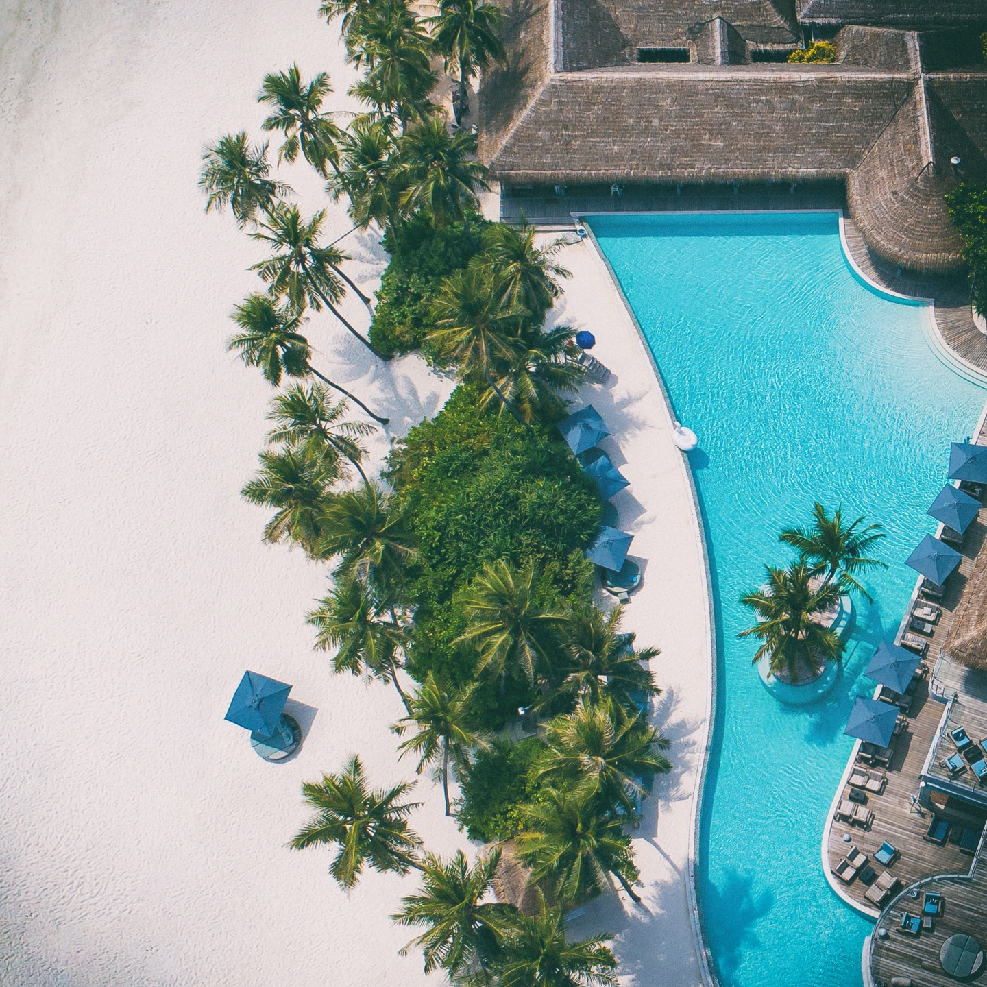 resort beach and pool from above