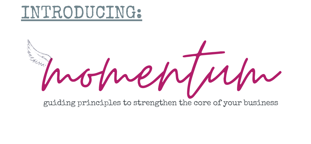 MOMENTUM: The membership group for consignment and resale store owners hosted by Angie Houloose, The Consignment Consultant
