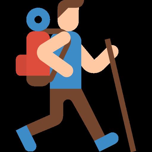 Camino guides